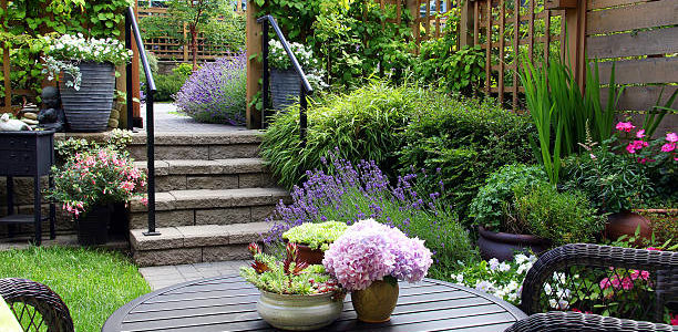 Landscape Design Style – The Best Look In Your Yard